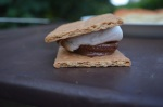 Ultimate Reese Cup S'mores